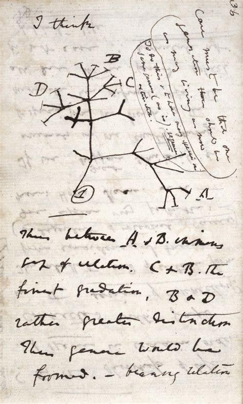 charles darwin a life of discovery angus carroll s blog