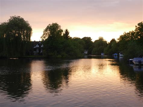 river thames update and millie makes three shepperton thames court river