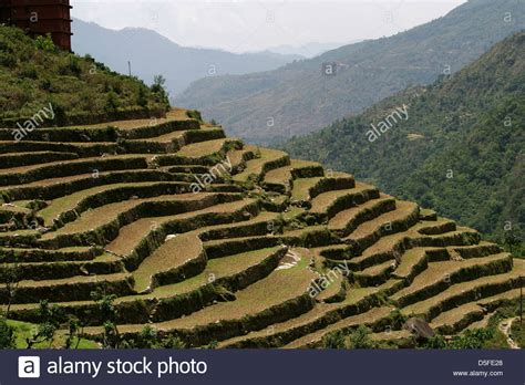 terrace farming in hindi terraced upland farming in the garhwal mountains stock