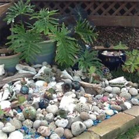 1000 images about shell garden ideas on pinterest