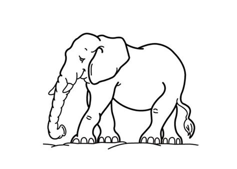 coloring page for elephant cartoon elephant coloring pages cartoon coloring pages