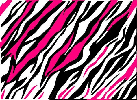 colorful zebra wallpaper colorful zebra print wallpaper clipart best
