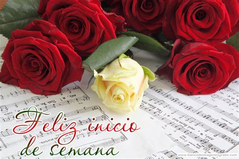 imagenes de feliz lunes con rosas banco de im 193 genes feliz inicio de semana 161 feliz lunes
