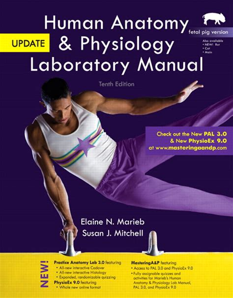 human anatomy physiology laboratory manual fetal pig version plus mastering a p with etext access card package 12th edition marieb mitchell smith human anatomy physiology