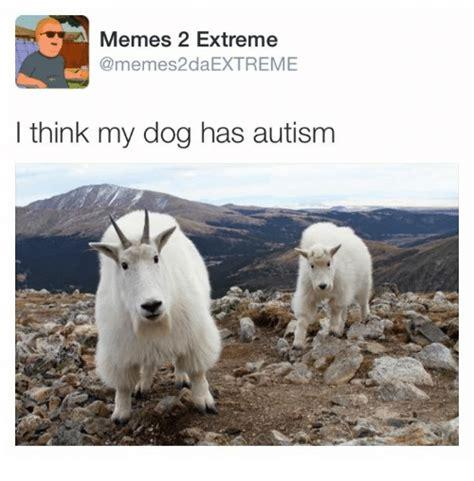 i think my has autism memes 2 memes2daextreme i think my has autism dogs meme on sizzle