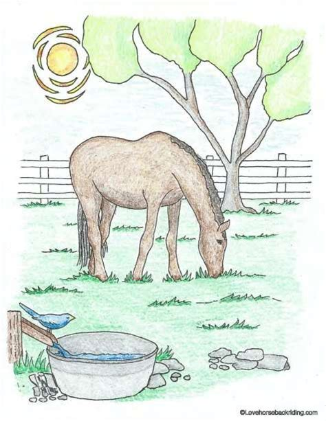 printable horse coloring pages for you to enjoy