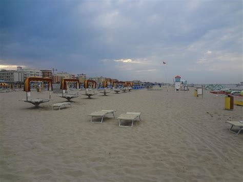 bagni ricci top 30 things to do in rimini italy on tripadvisor