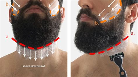 A Shave Is To Find 2 by How To Trim Your Beard Neckline Beard King