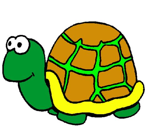 imagenes infantiles tortugas related keywords suggestions for dibujo tortuga