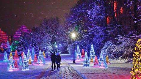 zootastic park christmas wonderland lights niagara falls will turn into a dreamy winter wonderland