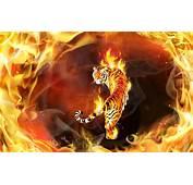 Tiger In Flames Wallpaper 17460