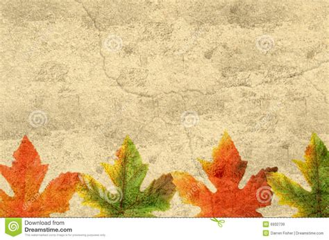 grunge leaves royalty free stock images image 6932739