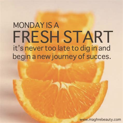 Mondays Fresh monday is a fresh start it s never late to dig in and