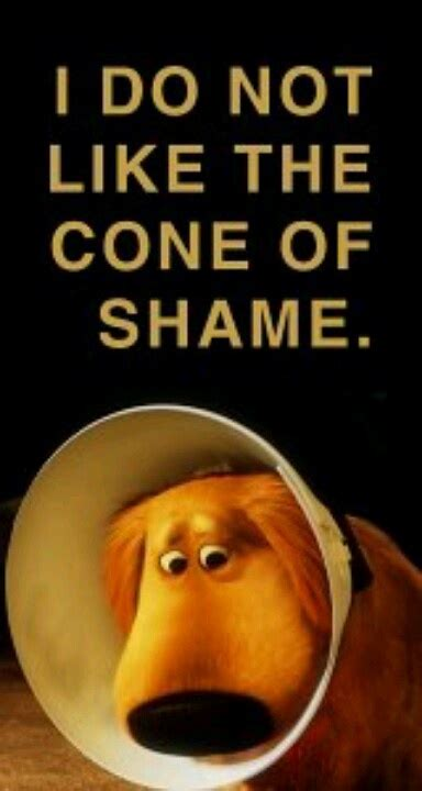 Cone Of Shame Meme - pin by stacey schwed hochstuhl on up all things disney s