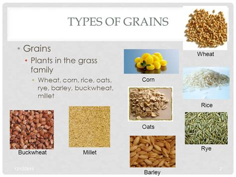 3 whole grain foods grain products foods i obj ppt