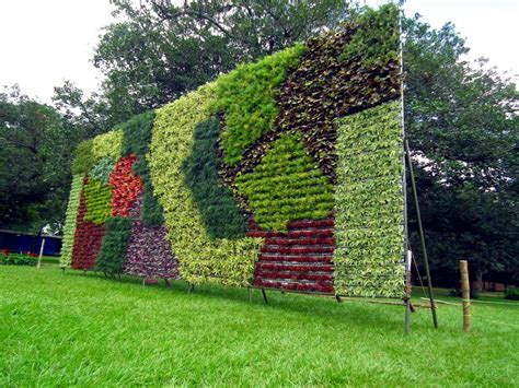 vertical gardens for green thumbs sustainability