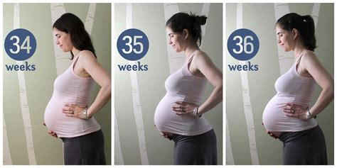 getting pregnant at 39 pregnancy after 35 community pregnancy update and belly pic weeks 34 36