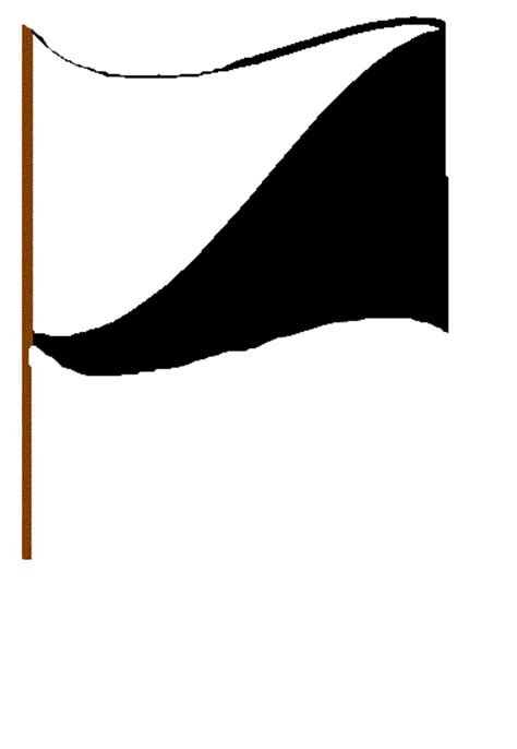 flag white black black white flag marshal