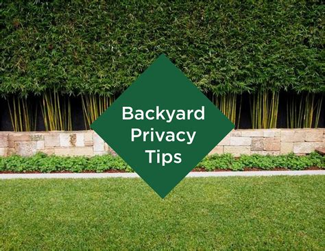 adding privacy to backyard backyard privacy tips living outdoors