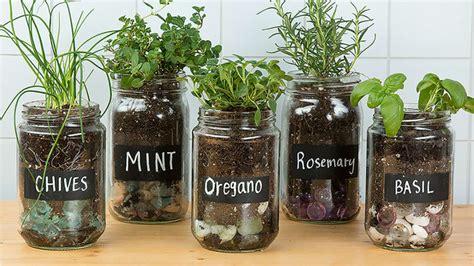 easy diy herb garden ideas tip junkie