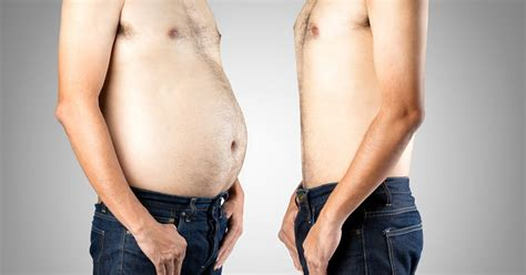 Shed Belly by 20 Effective Tips To Lose Belly Backed By Science