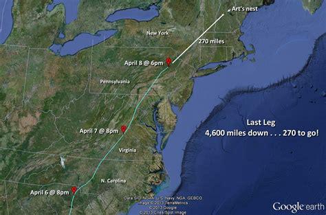 dove migration map texas 100 dove migration map rock pigeon audubon field guide the basics of bird migration how