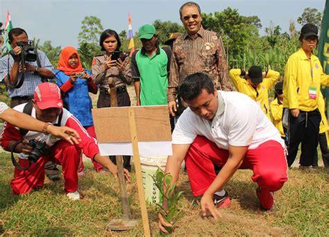 Bibit Pohon Gaharu Medan pemko medan dan fkpd medan tuntungan tanam bibit pohon