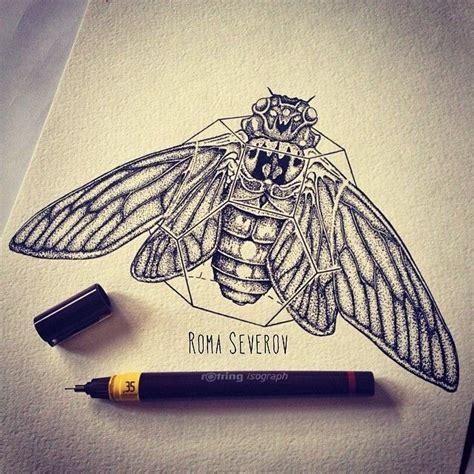 cicada tattoo cicada books worth reading