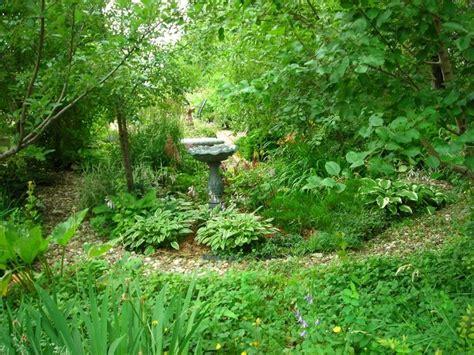 woodland garden ideas woodland garden 1024x768 gardening ideas pinterest gardens garden