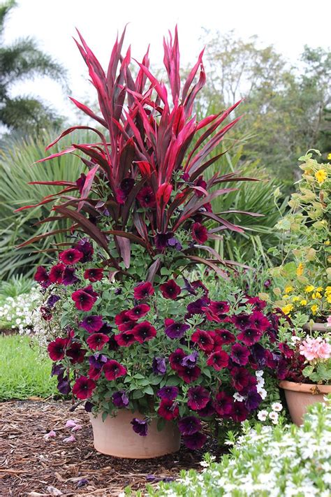 garden flower containers 700 best images about container gardening ideas on