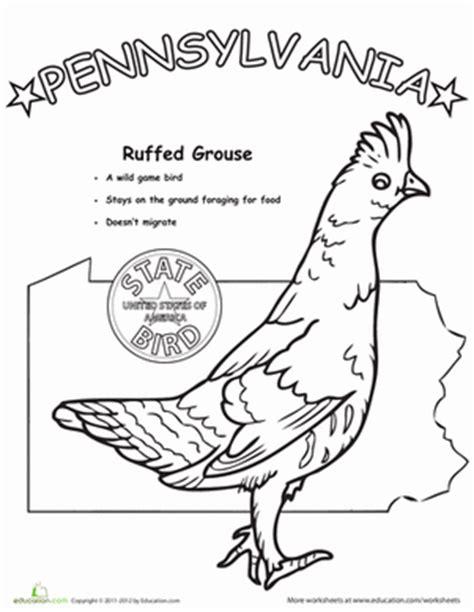 Pennsylvania State Bird Coloring Page pennsylvania state bird worksheet education