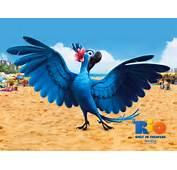Fotos De Blu Y Otros Personajes RIO  CineDor