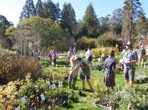 Regional Parks Botanic Garden Plant Sales Seeds Friends Of The Regional Parks Botanic Garden