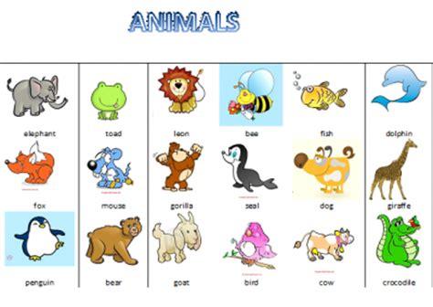 imagenes animales ingles wonderful world animales en ingles