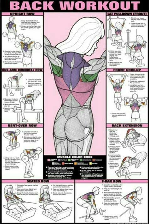 back workout diagram if you click on the pin it goes to ab workout so just look at the diagram