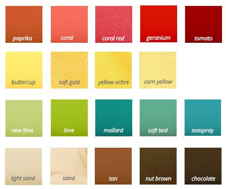 color types explaining the different types
