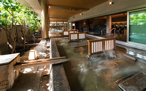 japanese bath house ancient bathing rituals natural skin care ecologic skin care