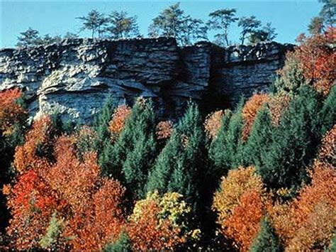 the cumberland plateau crossville tn easy living with