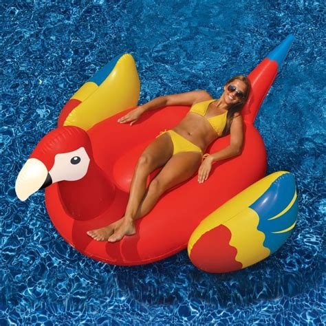 pool floats swimline parrot pool float 90629 contemporary pool toys and floats by hayneedle
