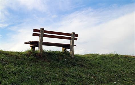 bench and field free images nature grass sky wood bench field