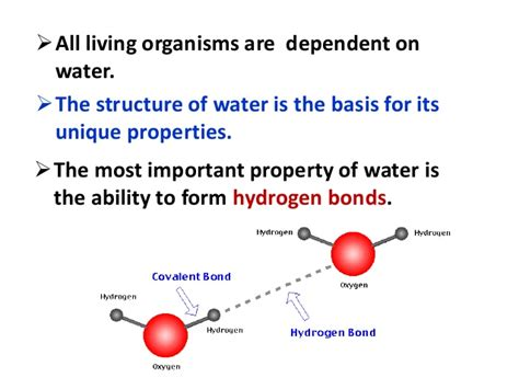 physical chemical and biological properties of water