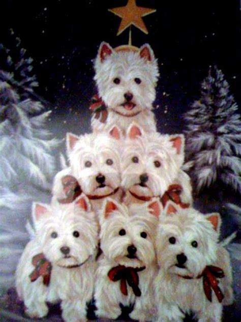 westie tree oh be still my merry christmas i