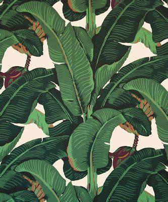 banana palm wallpaper banana leaves facebook and tropical on pinterest