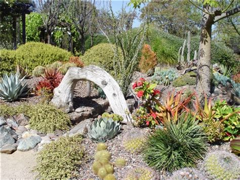 Succulent Rock Garden Succulents Garden Ideas Beautiful Succulent Garden Succulent Rock Garden Ideas Garden Ideas