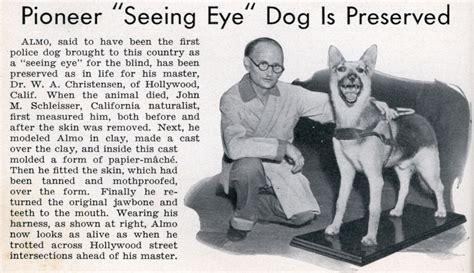 how to seeing eye dogs pioneer seeing eye is preserved modern mechanix