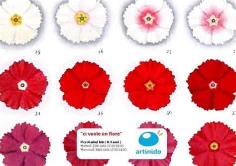 ci vuole un fiore lyrics ci vuole un fiore disegni da colorare