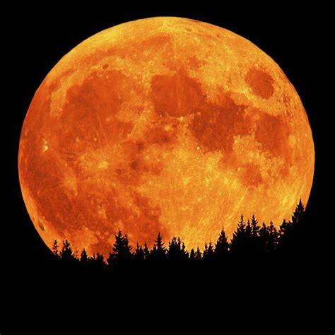 harvest full moon rise