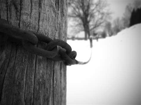 D Ziner D 8188 Black White B Original chain links explore chadcooperphotos photos on flickr ch flickr photo