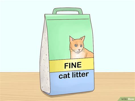 urinare a letto come impedire al gatto di urinare sul letto wikihow