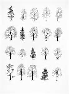 small black tree 8 tree designs and ideas for